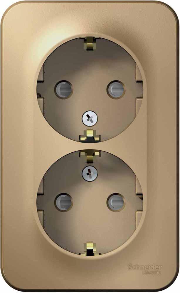 Розетка Schneider Electric Blanca, двухместная, с заземлением, с защитными шторками, 16 А, цвет: титан. SE BLNRA011214 телефонная розетка abb bjb basic 55 шато 1 разъем цвет черный