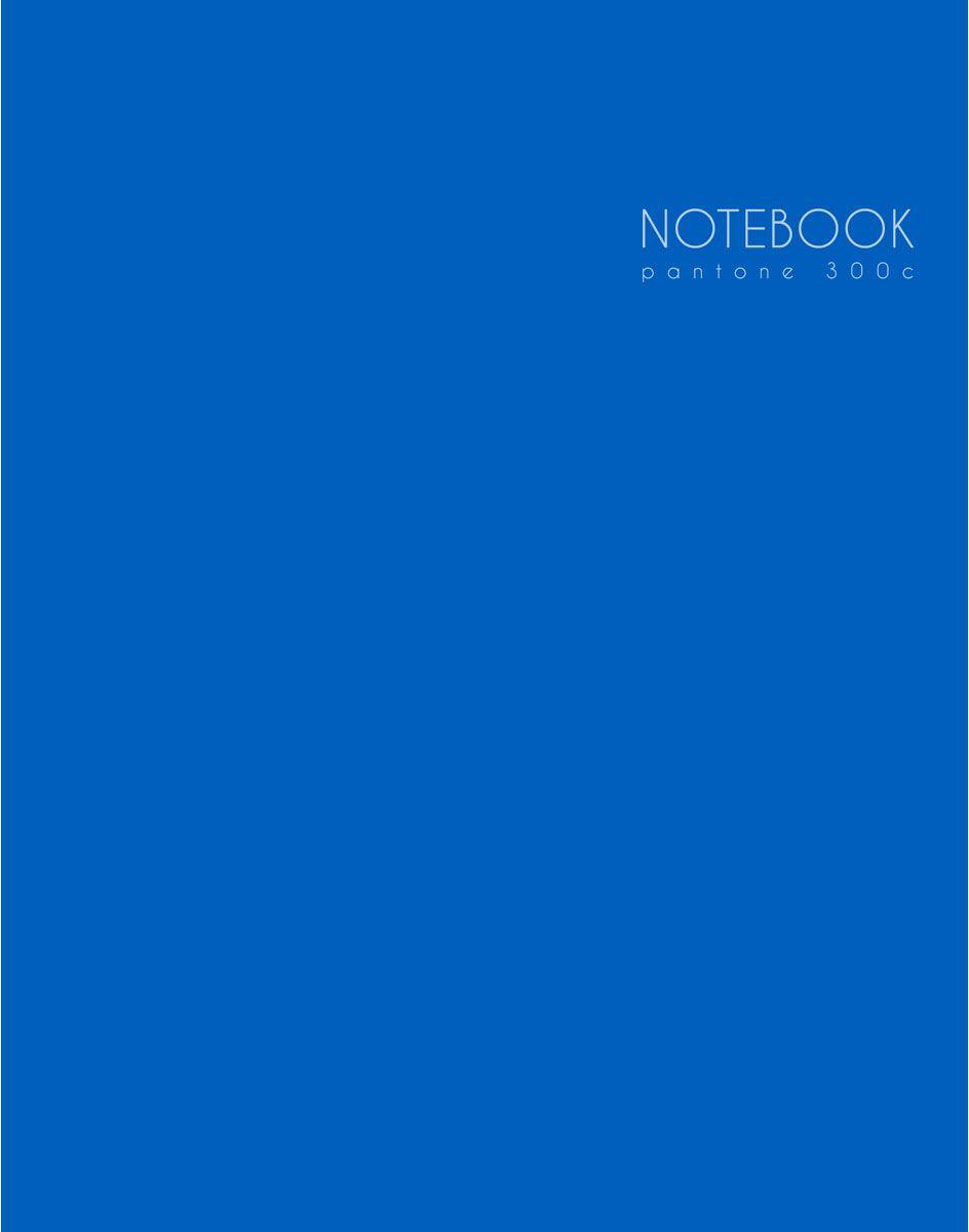 Канц-Эксмо Блокнот Новая палитра 96 листов цвет синий
