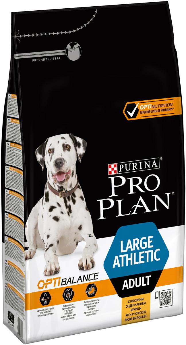 Корм сухой Pro Plan Atletik для взрослых собак крупных пород, с курицей, 3 кг корм сухой pro plan adult large athletic для собак крупных пород с атлетическим телосложением с курицей 14 кг