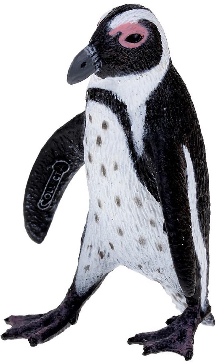 Collecta Фигурка Южноафриканский пингвин