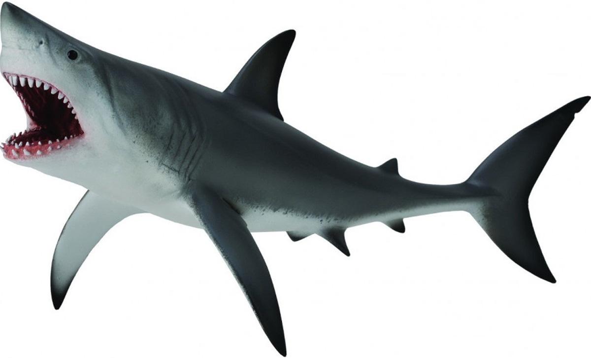Collecta Фигурка Акула большая белая вытяни иона и большая рыба история о человеке который хотел убежать от бога