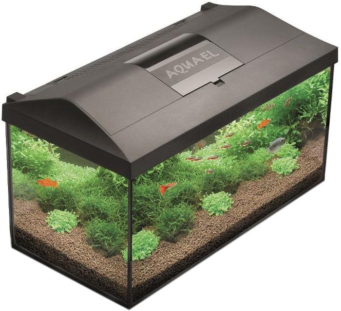 Aквариум Aquael Leddy Set 40, прямой, цвет: черный, прозрачный, 25 л аквариум aquael shrimp set 10 leddy tube 10л