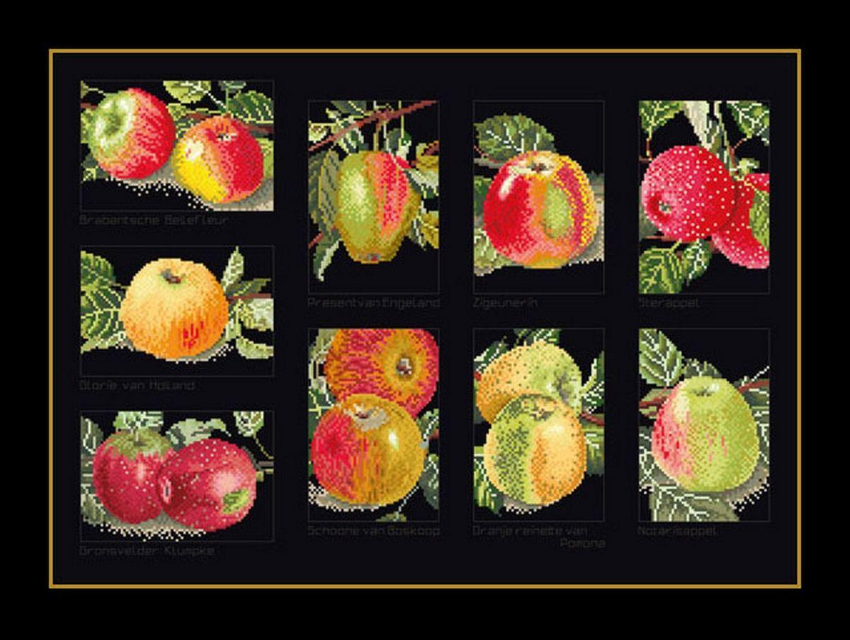"""Набор для вышивания крестом Thea Gouverneur """"Яблоки"""", 31 х 45 см"""