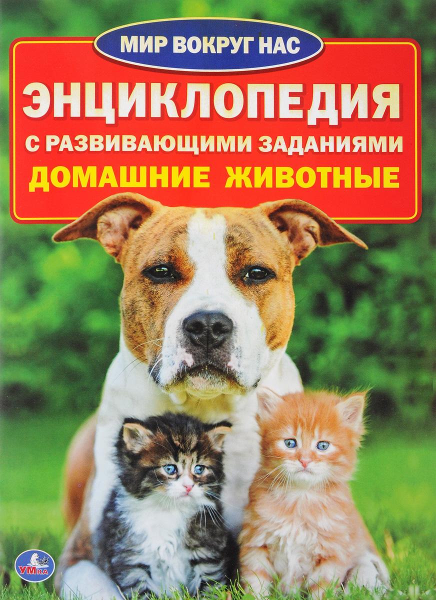 Умка. Домашние Животные (Энциклопедия А4)
