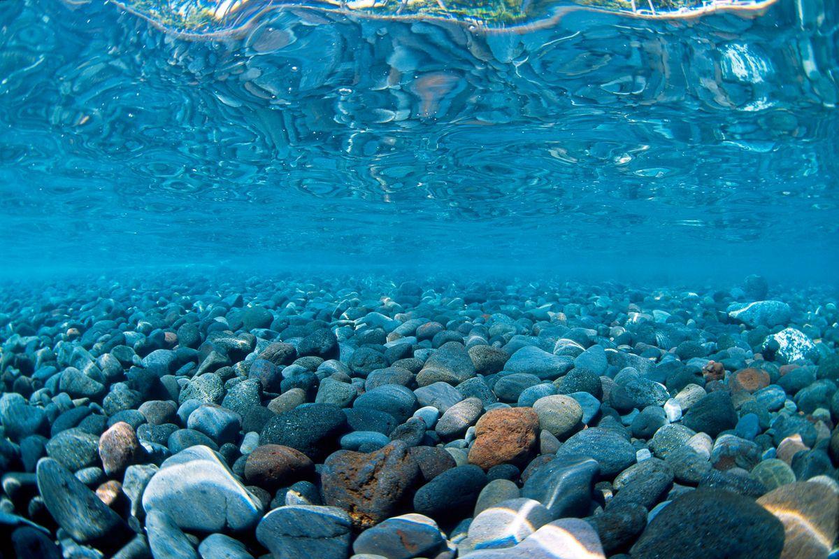 Фон аквариумный Barbus Горная река. Зеленое море, двухсторонний, 45 см х 94