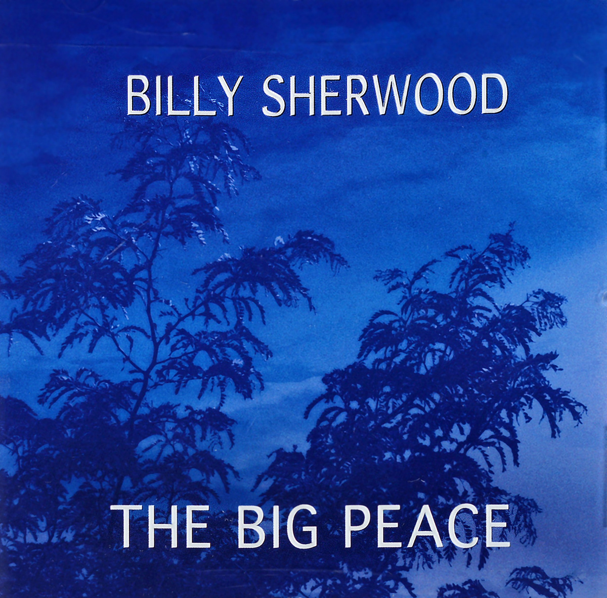 Билли Шервуд Billy Sherwood. The Big Peace рэнди вестон билли харпер randy weston billy harper the roots of the blues