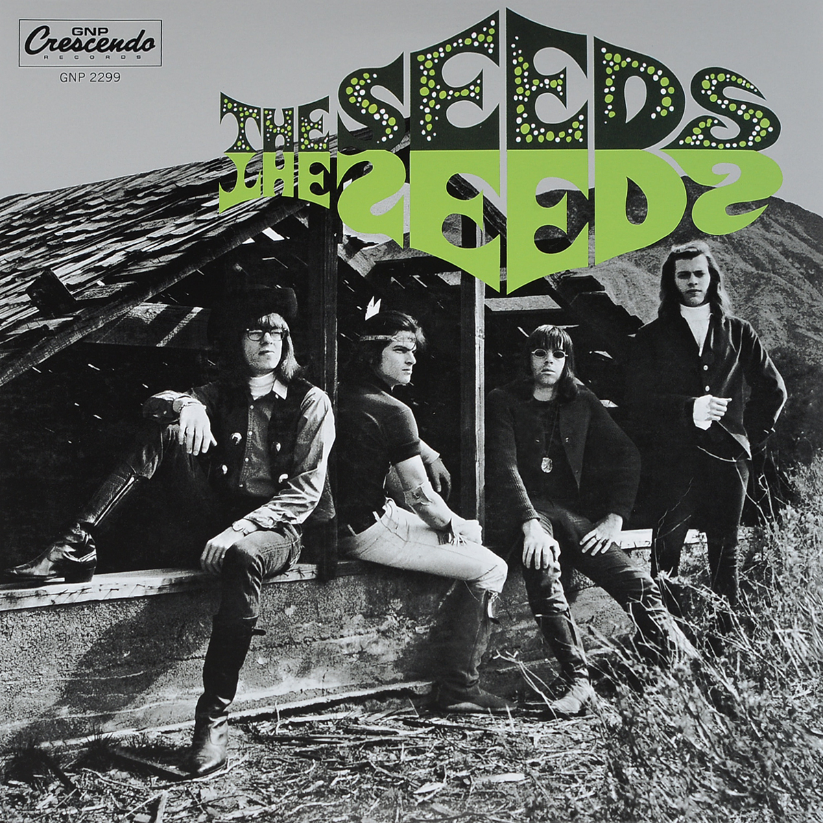 The Seeds The Seeds. The Seeds: Deluxe 50th Anniversary (2 LP) silver seeds