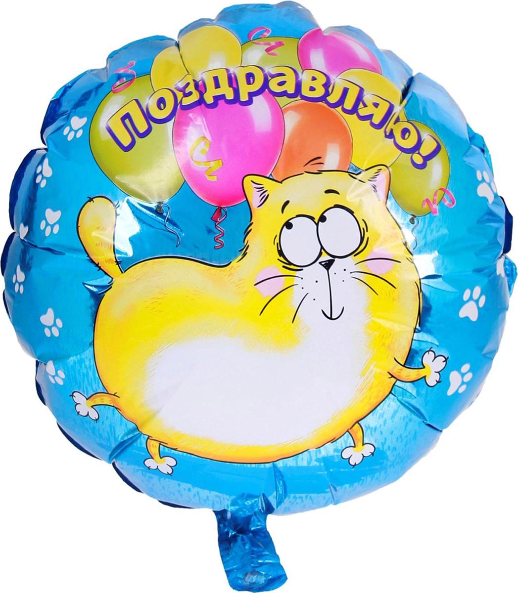 Страна Карнавалия Шар фольгированный Поздравляю Котэ Круг 18 дюймов 48260 страна карнавалия шар фольгированный поздравляем круг 18 дюймов 332966