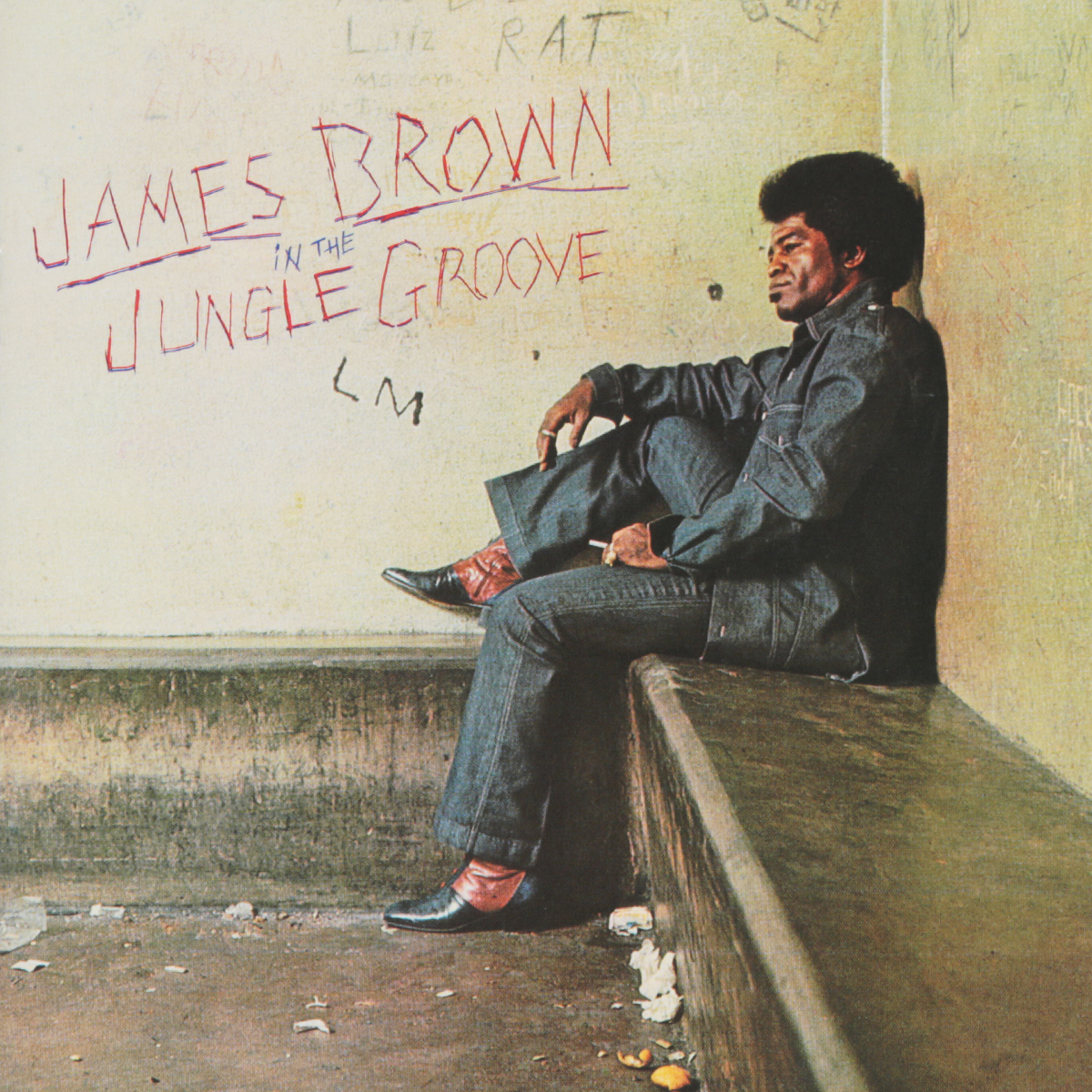 Джеймс Браун James Brown. In The Jungle Groove james brown james brown night train colour
