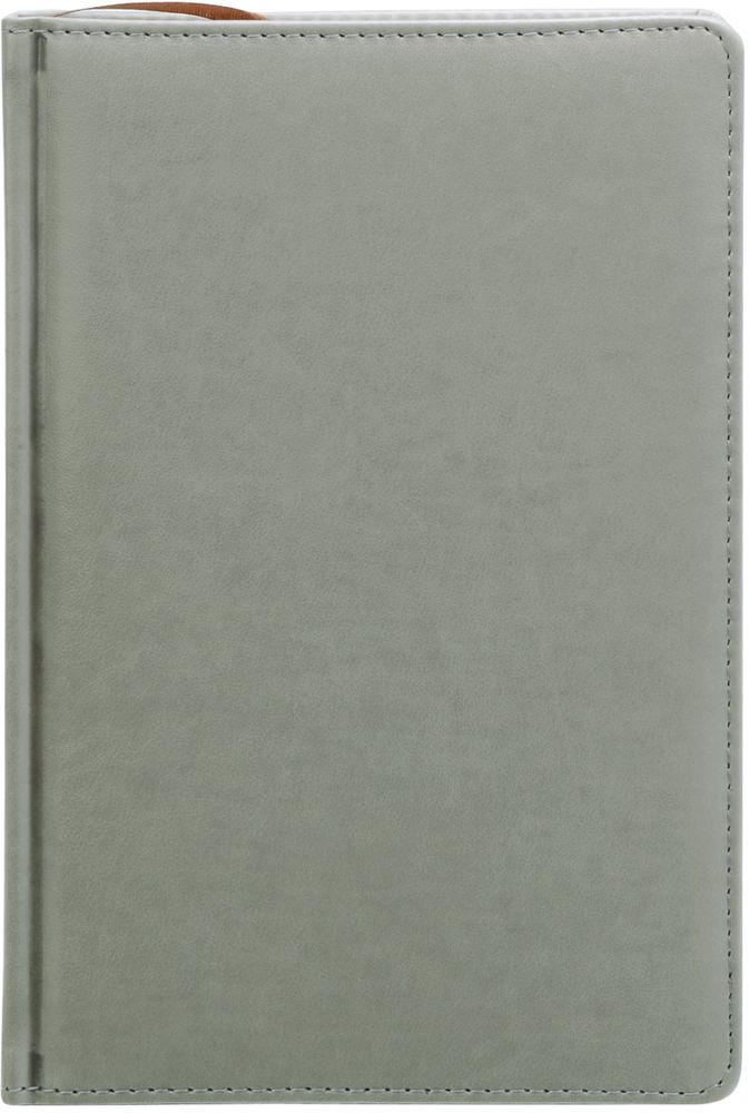 Index Ежедневник Avanti недатированный 336 листов цвет серый формат А5 ежедневник недатированный index spectrum ф а5 кожзам лин ляссе 256с бирюзовый idn121 a5 tq