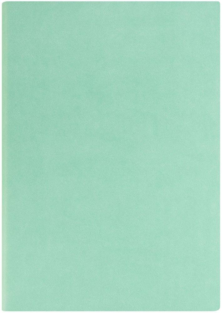 Index Ежедневник Spectrum 256 листов цвет мятный формат А5 ежедневник недатированный index spectrum a5 искусственная кожа idn121 a5 mt