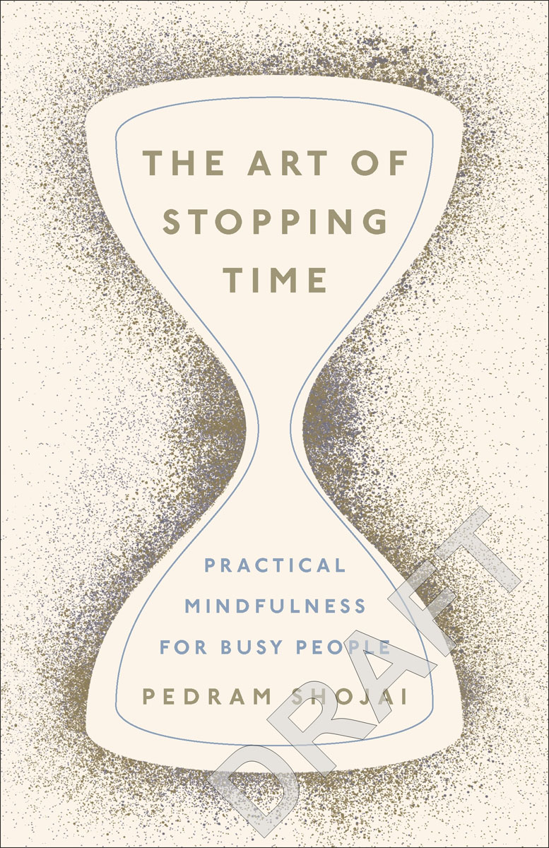 The Art of Stopping Time arie wilschut images of time the role of historical consciousness of time in learning