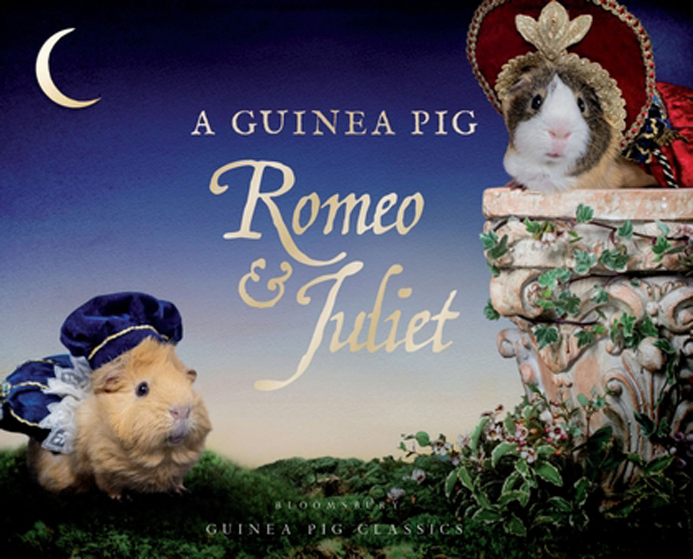 A Guinea Pig Romeo & Juliet delius sir charles mackerras a village romeo and juliet