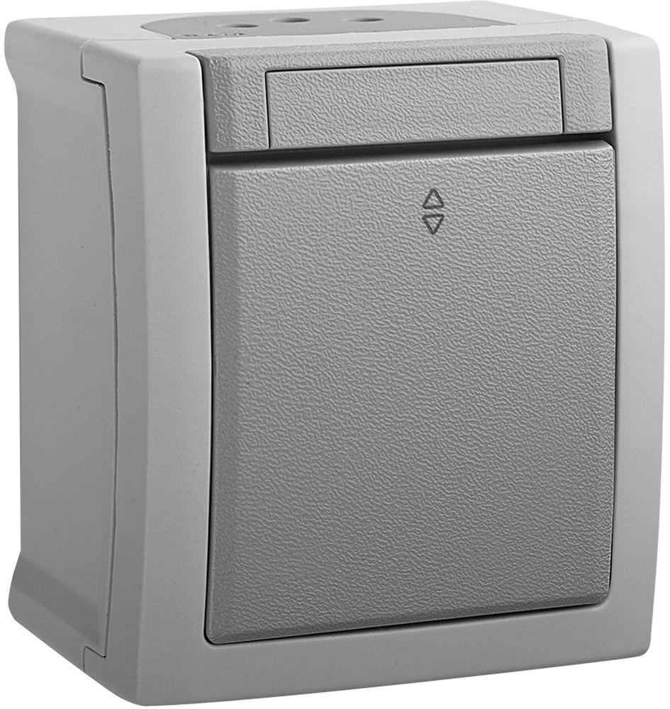 Переключатель Panasonic Pacific, проходной, одноклавишный, цвет: серый, 10 А. 54718
