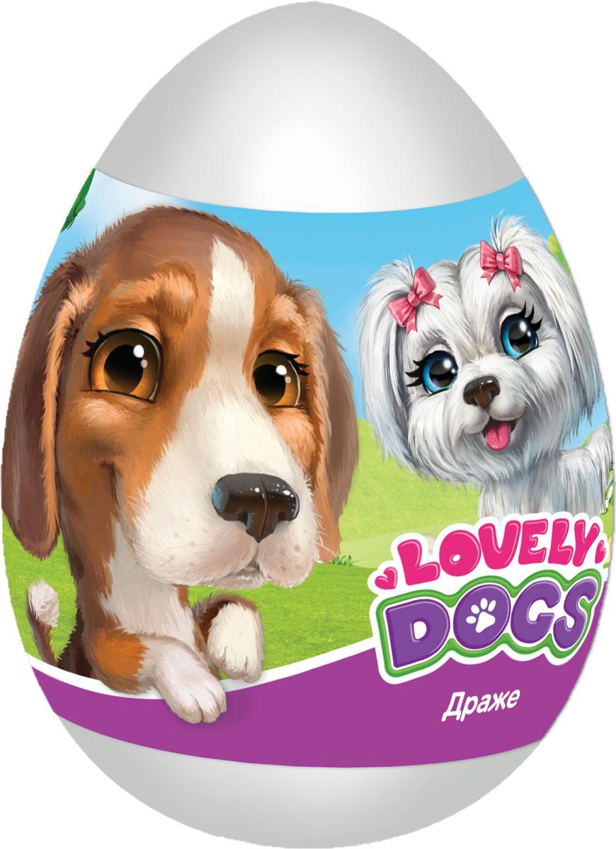 Конфитрейд Lovely dogs фруктовое драже с игрушкой, 20 г конфитрейд водофон фруктовое драже с игрой 5 г