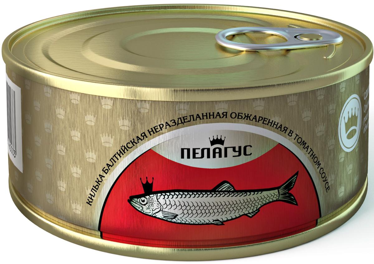 Пелагус килька неразделанная обжаренная в томатном соусе, 240 г бычки аквамарин в томатном соусе 240 г