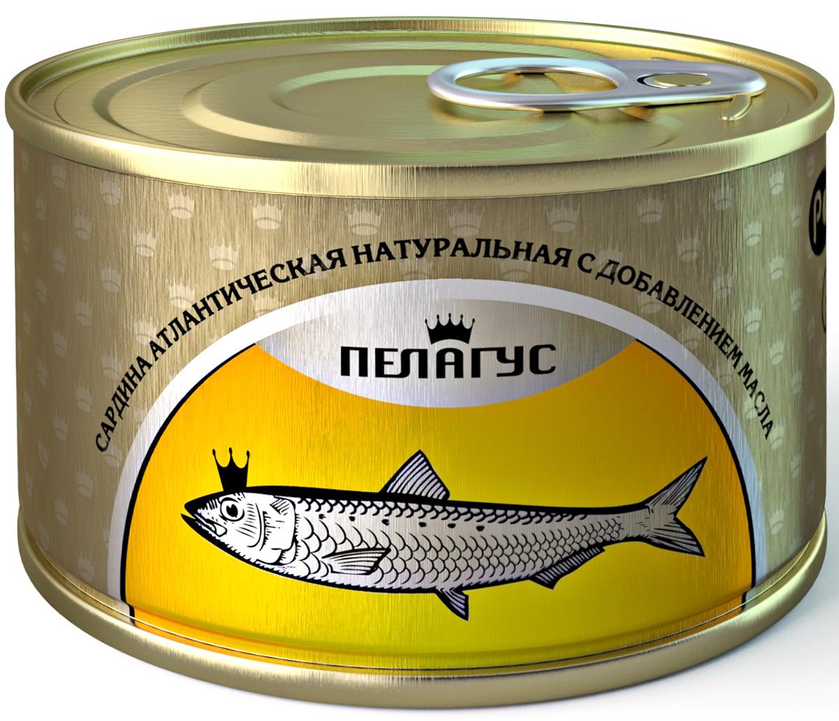 Пелагус сардина атлантическая натуральная с добавлением масла №5, 230 г Пелагус