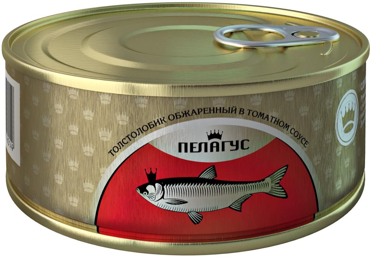 Пелагус толстолобик обжаренный в томатном соусе, 240 г бычки аквамарин в томатном соусе 240 г