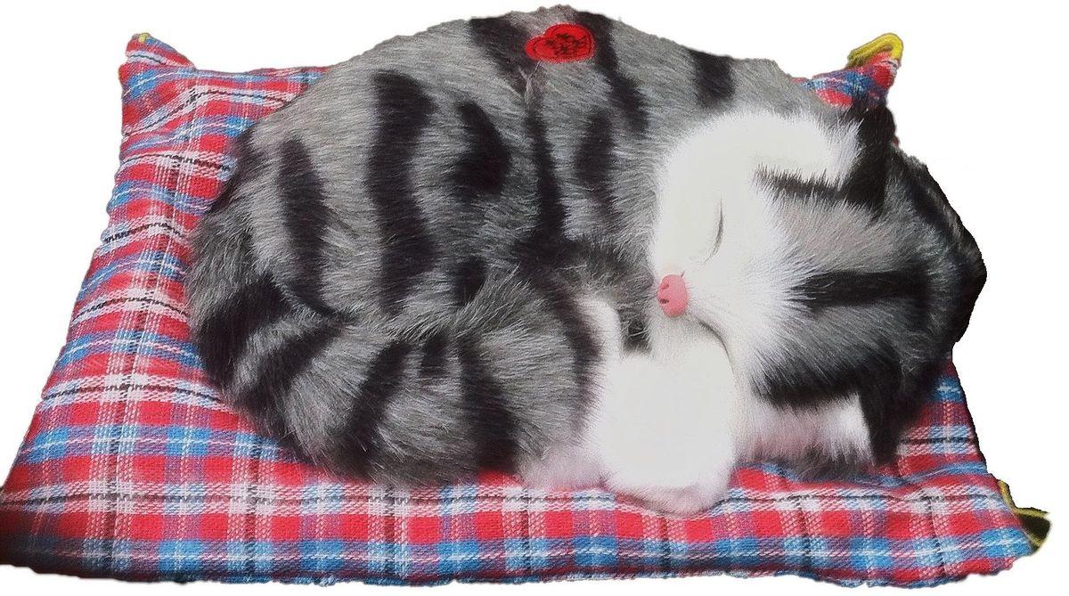картинка толстая кошка сидит на коврике использовать отдельные пологи