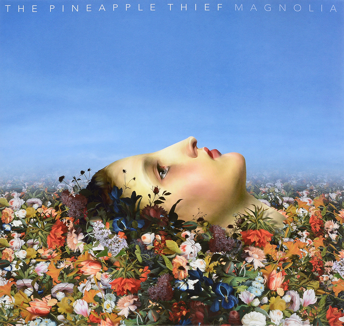 The Pineapple Thief The Pineapple Thief. Magnolia (2 LP) the grave thief