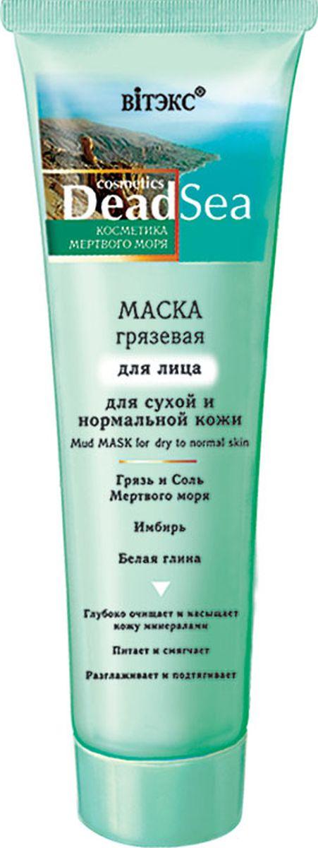 Витэкс Маска грязевая для лица для сухой и нормальной кожи Dead Sea, 100 мл косметические маски spa pharma грязевая маска для нормальной и жирной кожи