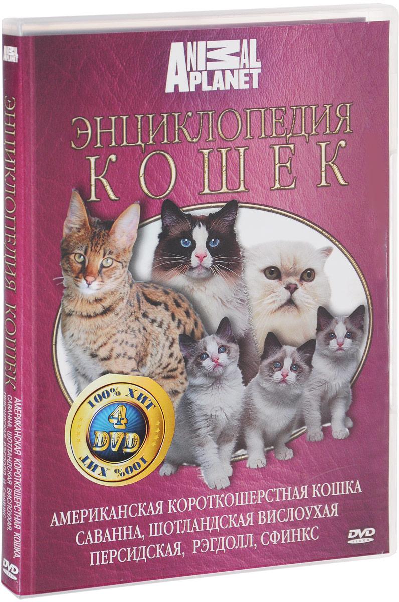 Discovery: Все о кошках (4 DVD) discovery настоящие люди х 4 dvd
