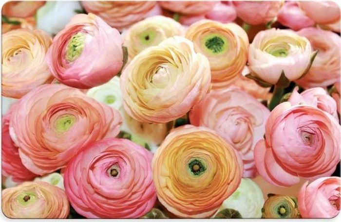 Салфетка под горячее Fenghua Flowers, 43,5 х 28 см. TAP021 sans tabù салфетка под приборы