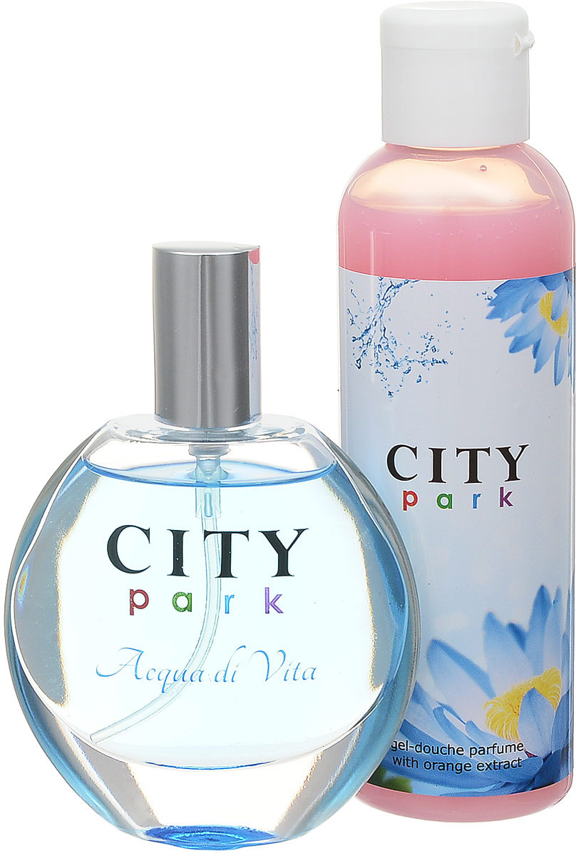 City Parfum Парфюмированный набор: City Park Acqua di Vita Туалетная вода, 50 мл + Гель для душа, 150 мл цена