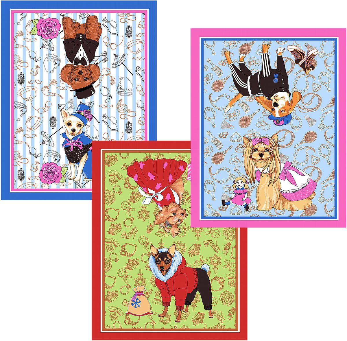 Набор кухонных полотенец Мультидом Собака-модница, цвет: синий, красный, розовый, 48  62 см, 3 шт