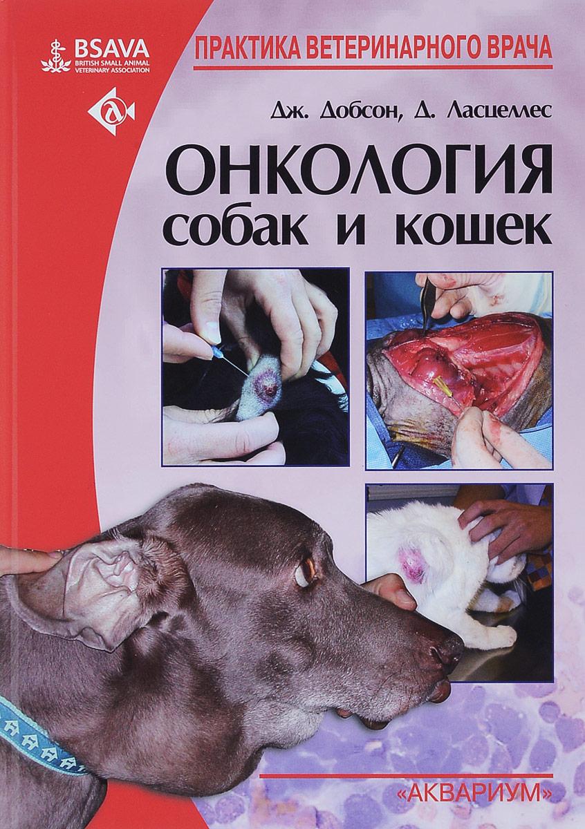 Онкология собак и кошек арутюнов г терапевтические аспекты диагностики и лечения заболеваний сердца и сосудов