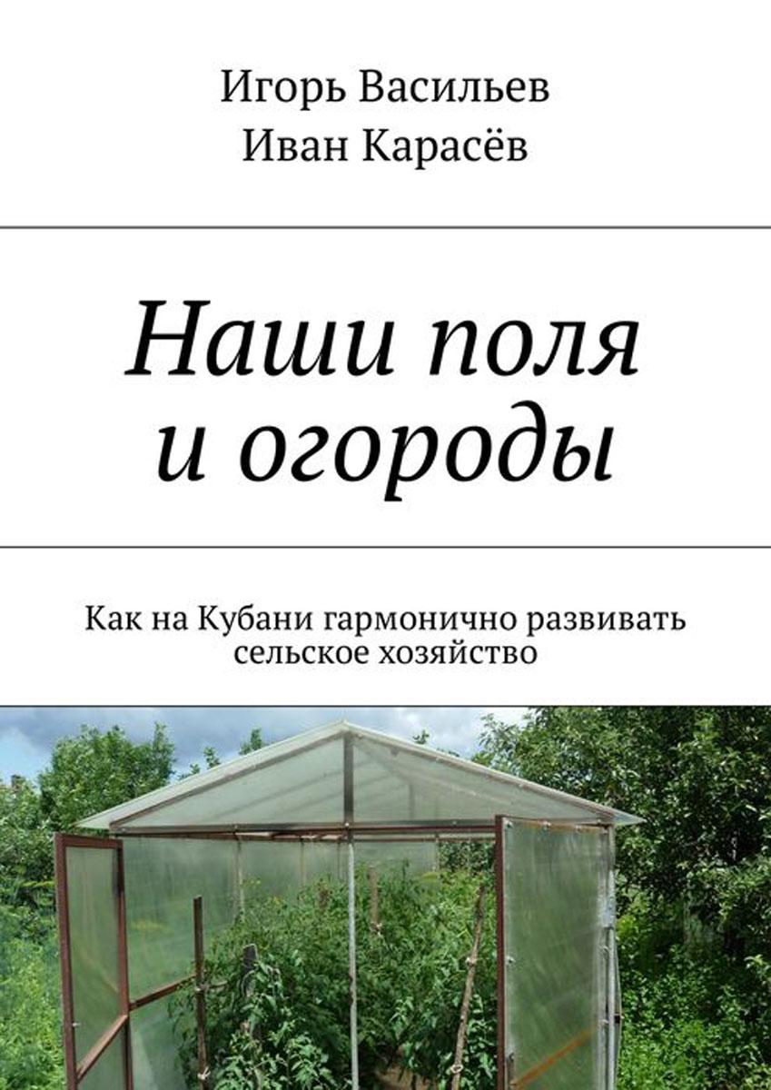 Наши поля и огороды. Как на Кубани гармонично развивать сельское хозяйство