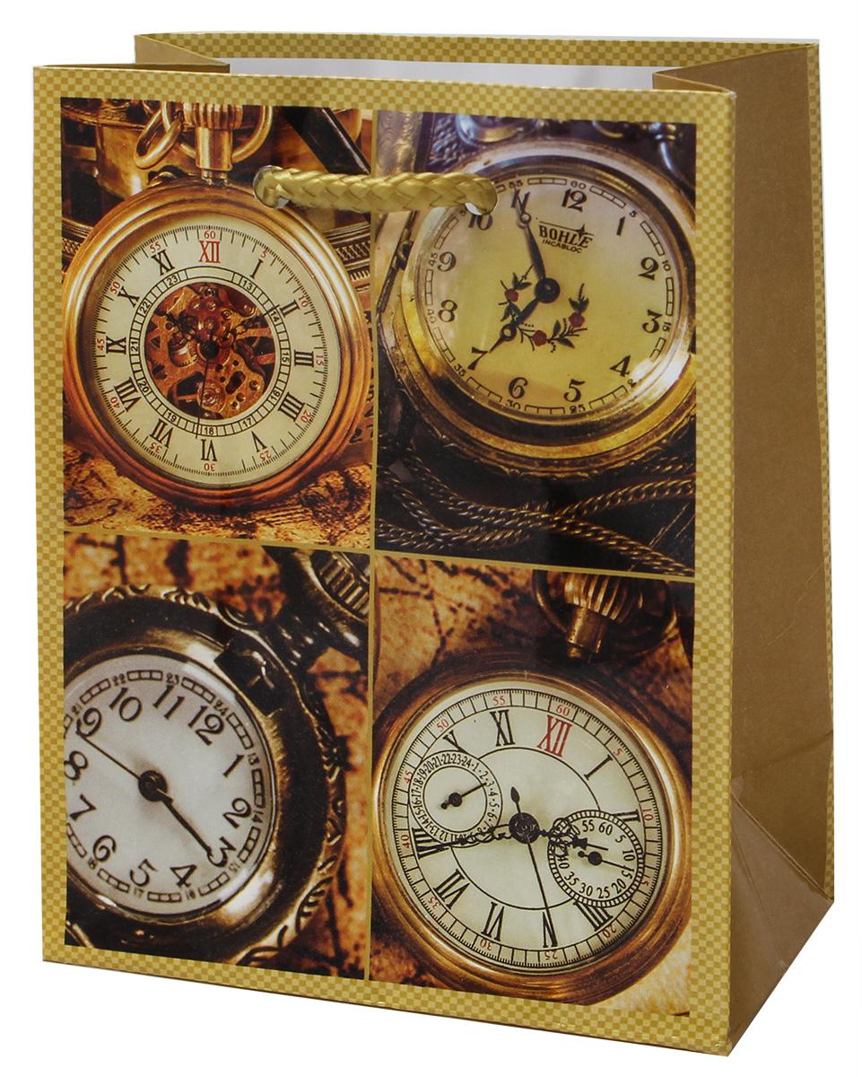 Пакет подарочный Мегамаг, ламинированный, 11 х 13,7 х 6 см. 1084 S пакет подарочный ламинированный 111 137 62 мм 8 видов
