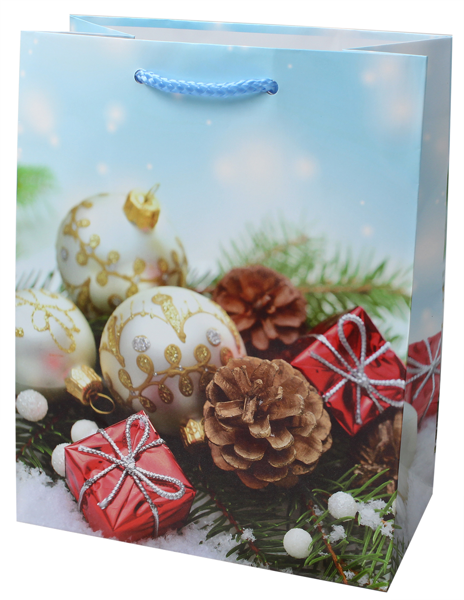 Пакет подарочный Мегамаг, ламинированный, 18 х 22,7 х 10 см . 2212 M росмэн пакет подарочный миньоны друзья 230 180 100