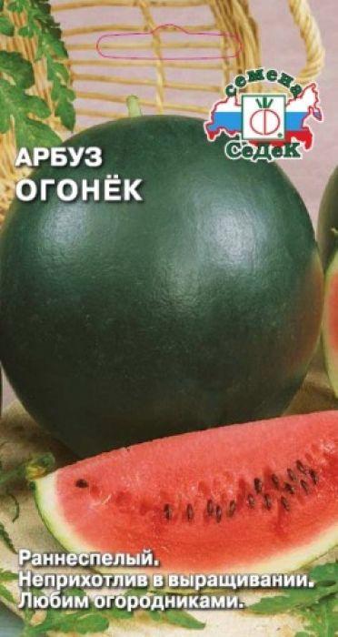 """Семена Седек """"Арбуз. Огонек"""", 1 г"""