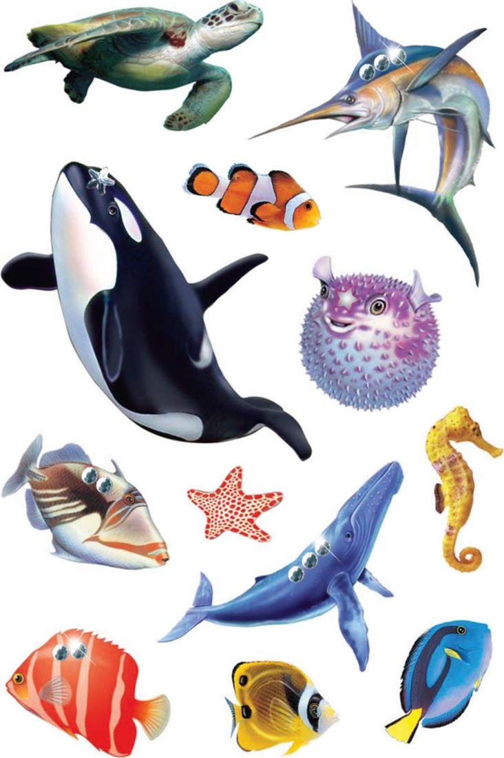 Обитатели морей и океанов для детей картинки с названиями