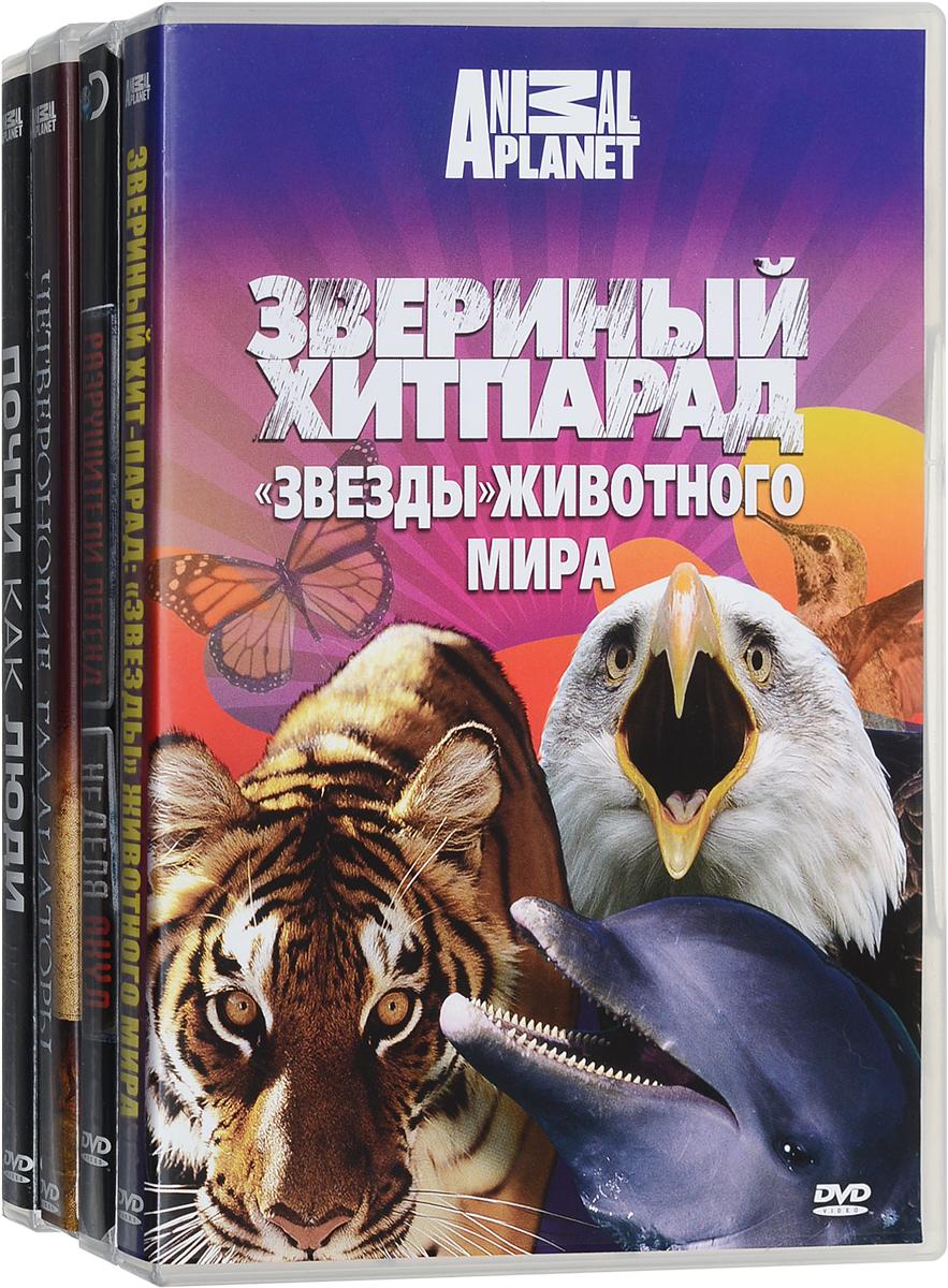 Фото - Discovery: Звезды животного мира (4 DVD) видео