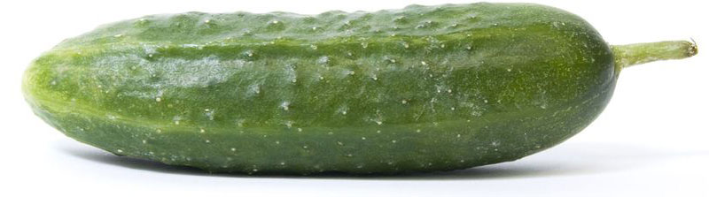 Огурцы среднеплодные грунтовые, упаковка Огурцы - настоящий рекордсмен среди...