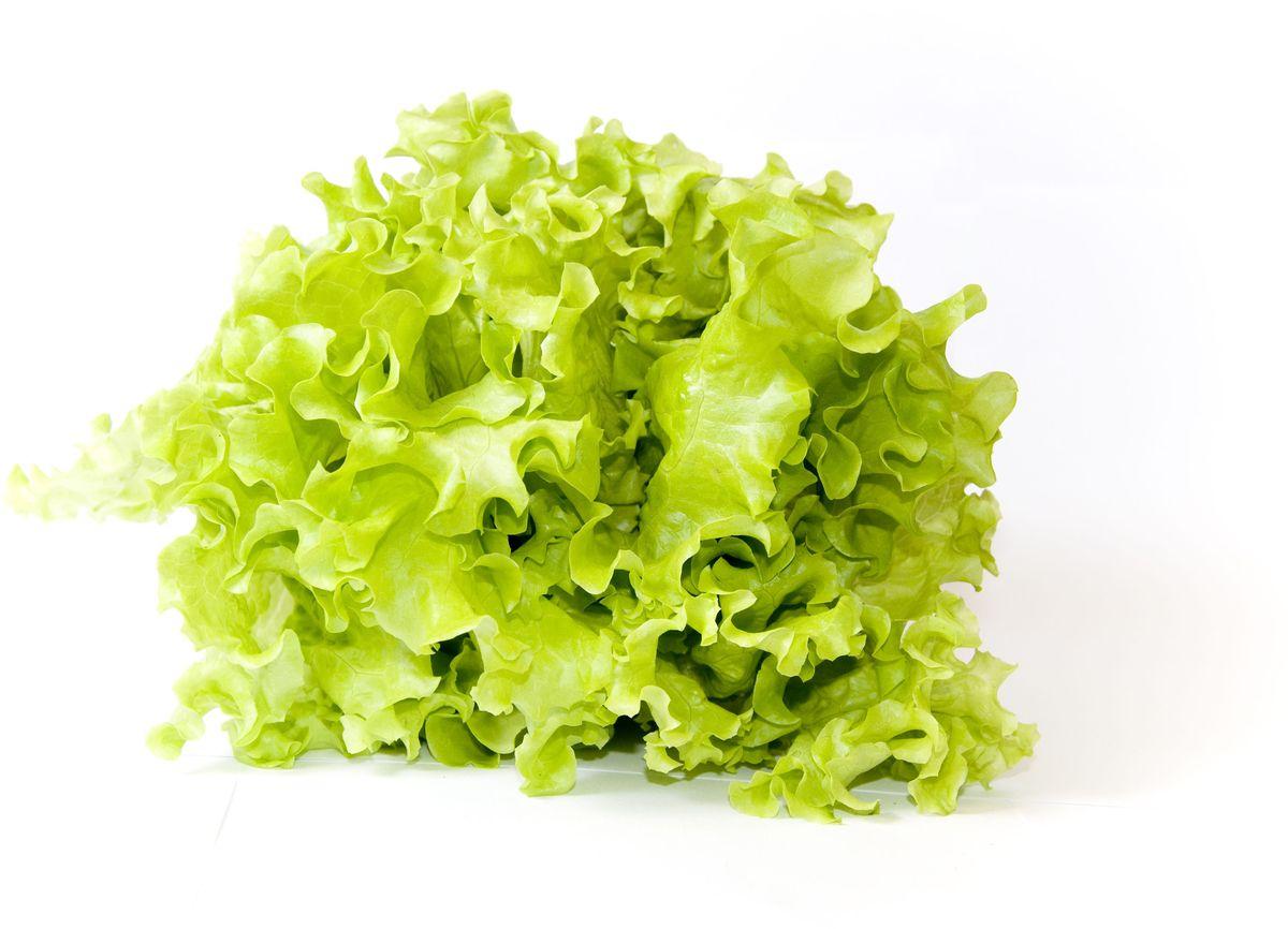 Салат Листовой, 1 шт Чрезвычайно нежный и сочный листовой...