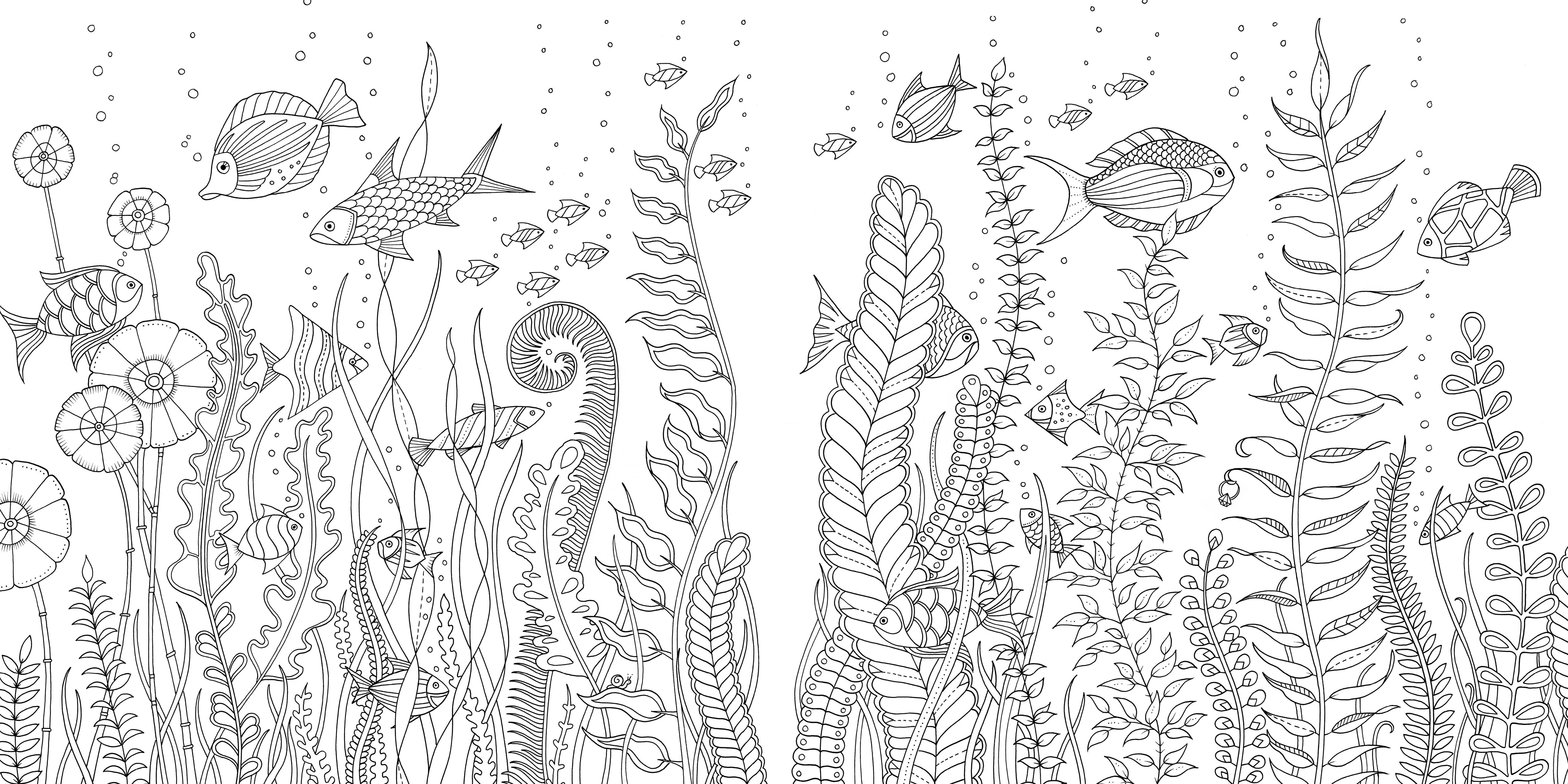 Затерянный океан раскраска