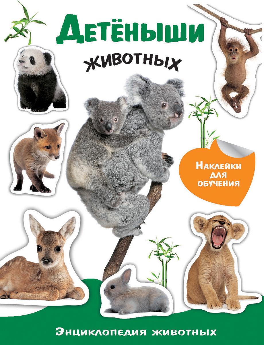 Детеныши животных (+ наклейки) хочу знать детеныши животных
