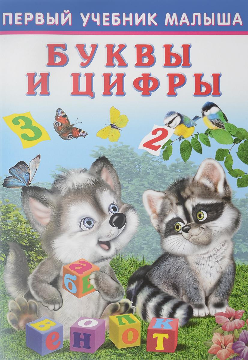 Ю. Зверькова, И. Приходкин Буквы и цифры