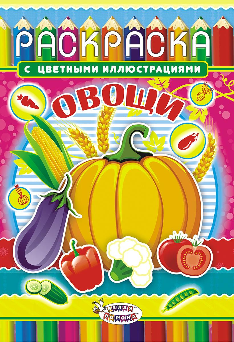 купить ЛиС Раскраска Овощи недорого