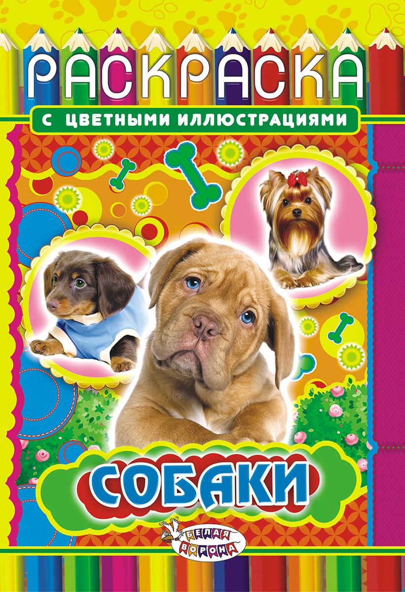 ЛиС Раскраска Собаки РКС-556