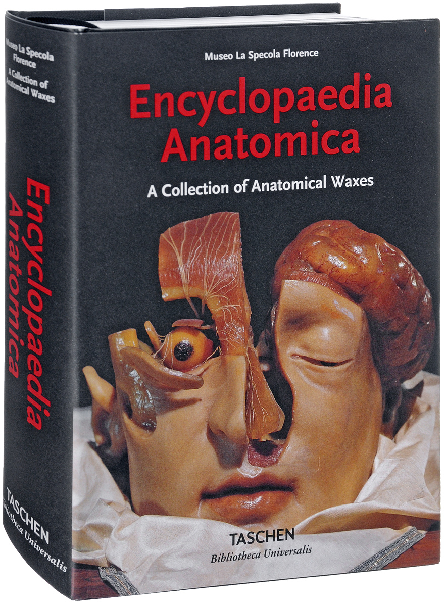 Encyclopaedia Anatomica anatomy a cutaway look inside the human body