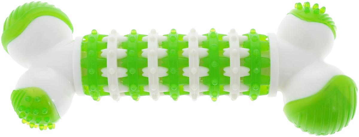 Игрушка для собак Грызлик Ам Косточка. Dental Nylon, цвет: зеленый, белый, длина 18,5 см игрушка для собак грызлик ам бантик bottle sound цвет голубой длина 16 2 см