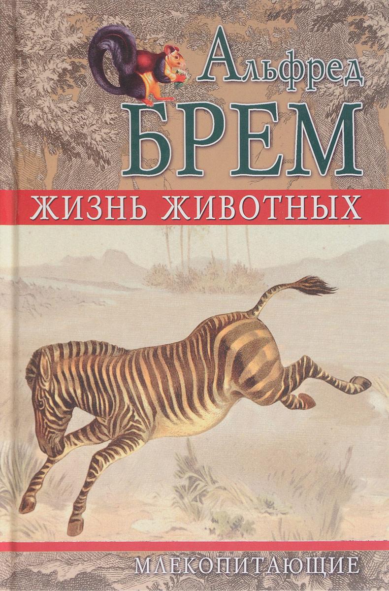 Брем А. Жизнь животных. Млекопитающие. Том 5 judy nayer млекопитающие