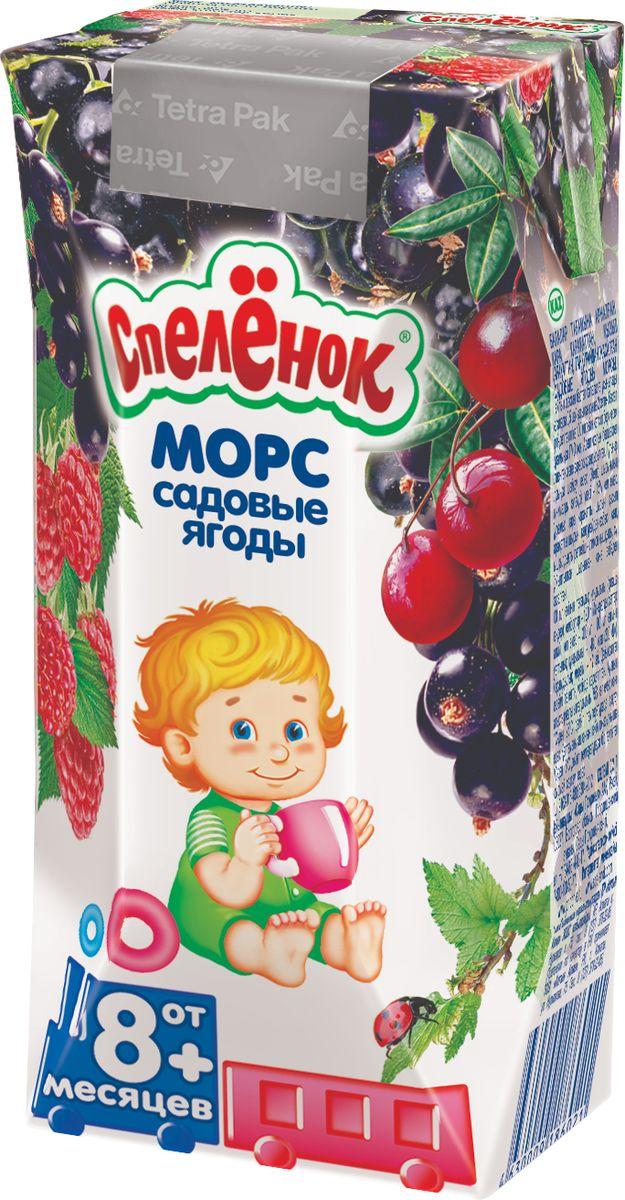 Спеленок морс Садовые ягоды черная смородина-красная смородина-малина с 8 месяцев, 0,2 л иванов морс черная смородина 1 л