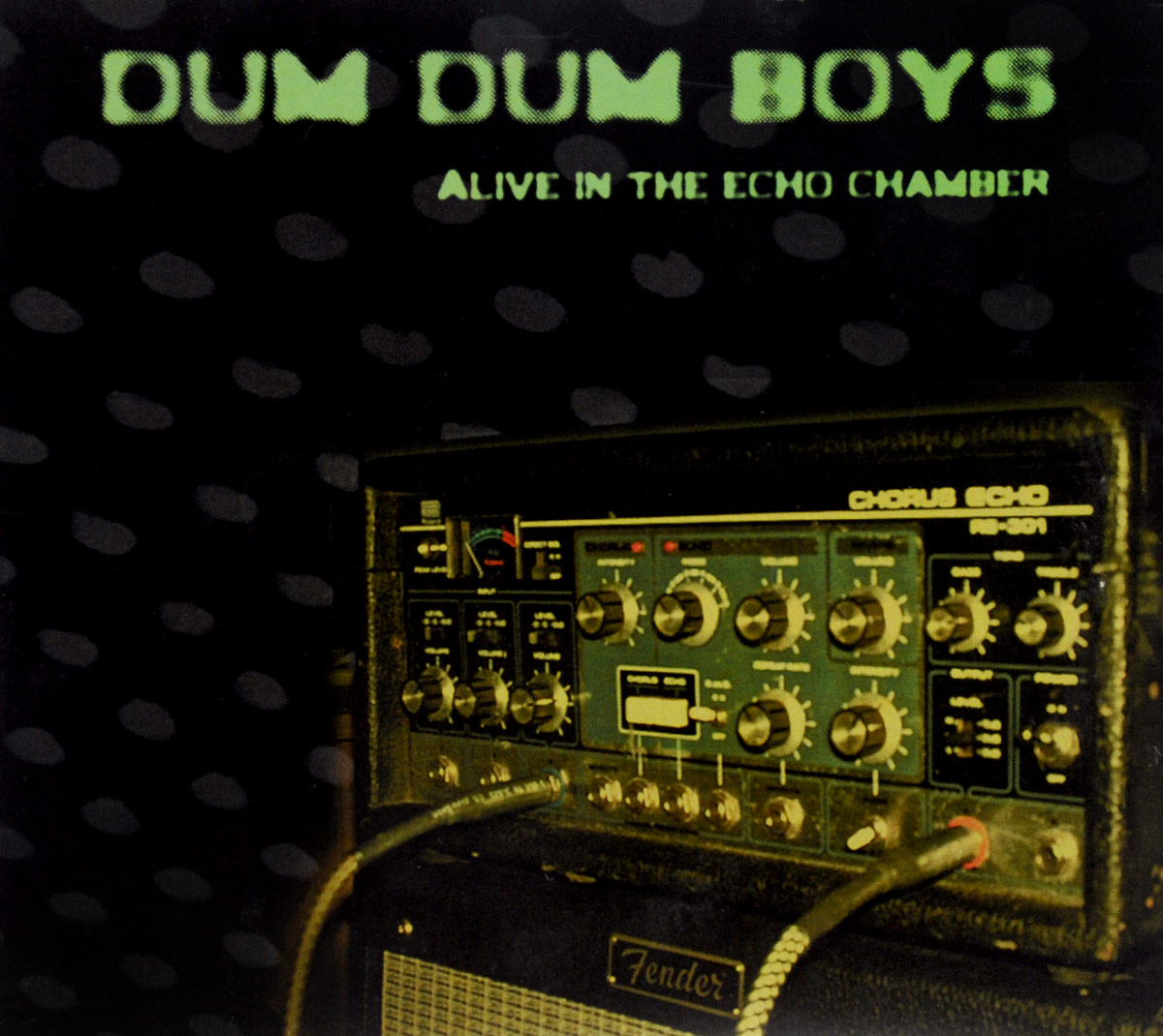 Dum Boys. Alive In The Echo Chamber