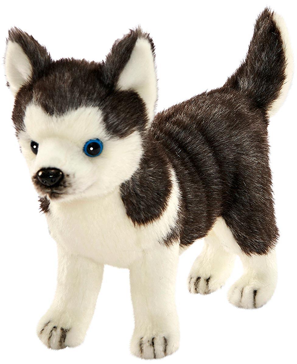 считают слово смотреть собачки картинки игрушки дома, еще несколько