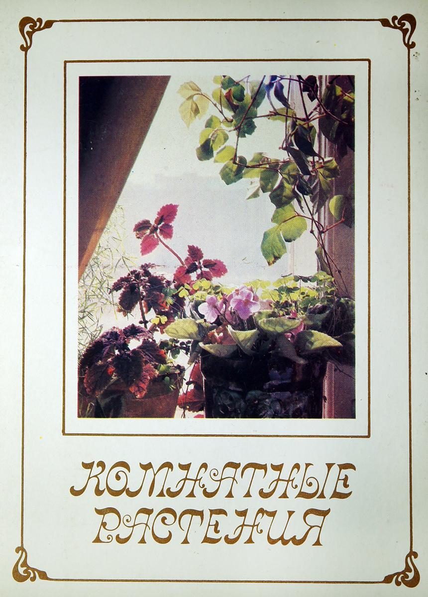 Комнатные растения (набор из 15 открыток)ЗАЮ003.АН-09.01.2018-30Набор открыток Комнатные растения (набор из 15 открыток). Планета, СССР, 1986 г. Размер: 11 х 15 см. Сохранность хорошая.